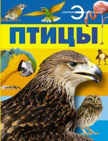 Спектор А.А. - Птицы обложка книги
