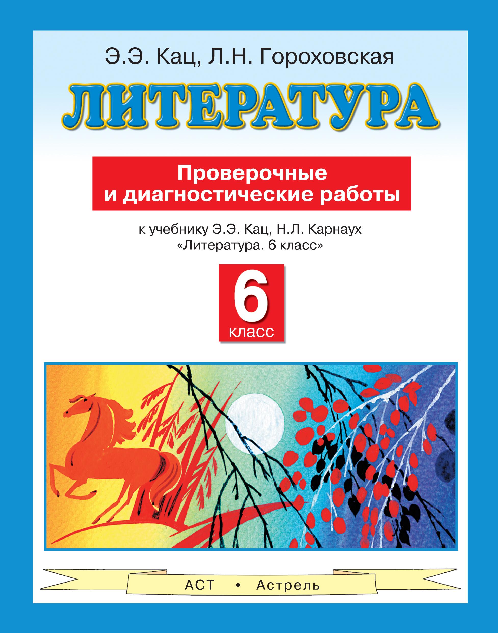 Литература. 6 класс. Проверочные и диагностические работы