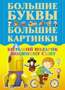 Александров И.В., - Большой подарок любимому сыну обложка книги