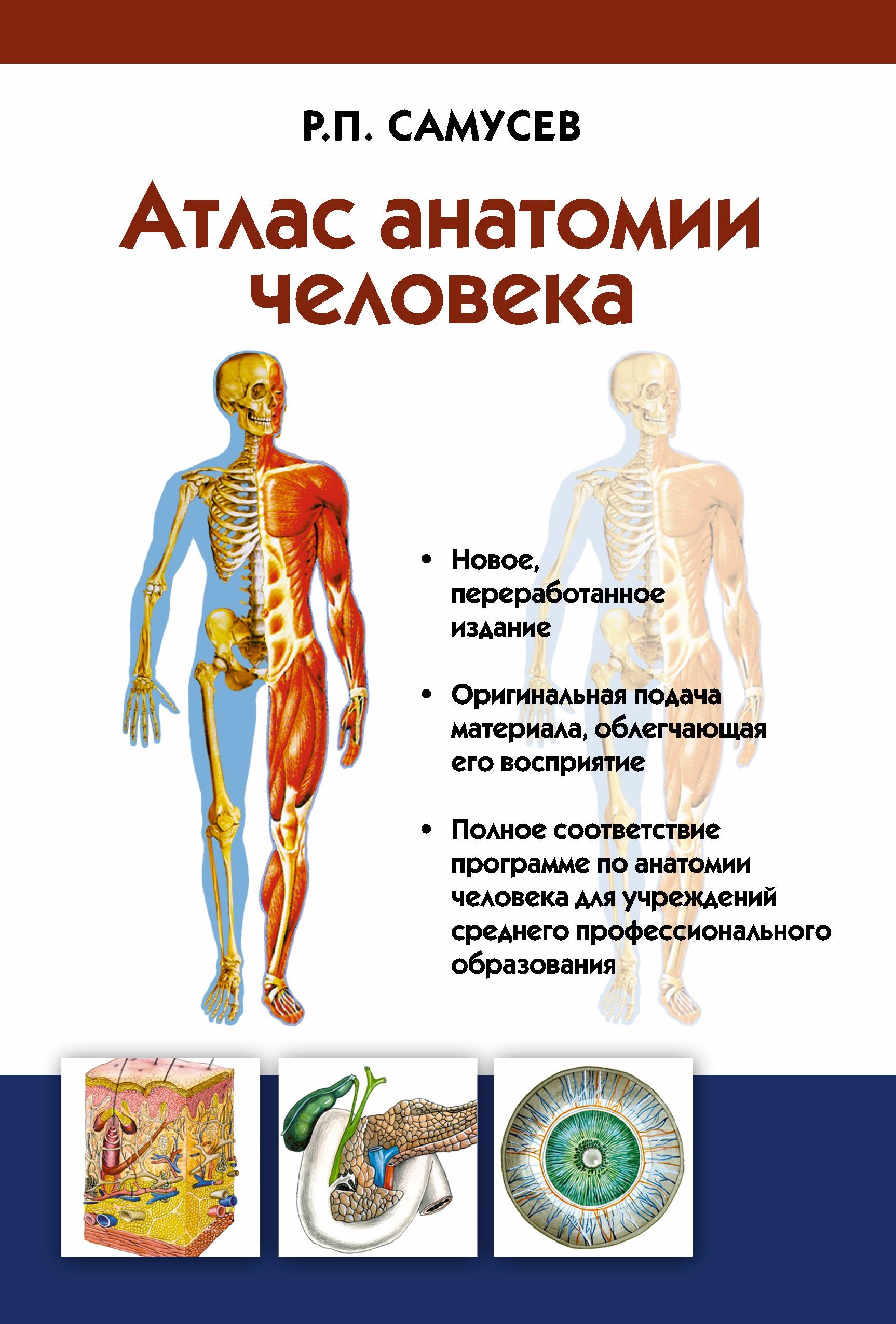 Атлас анатомии человека. Учебное пособие для студентов учреждений среднего профессионального образования ( Самусев Р.П.  )