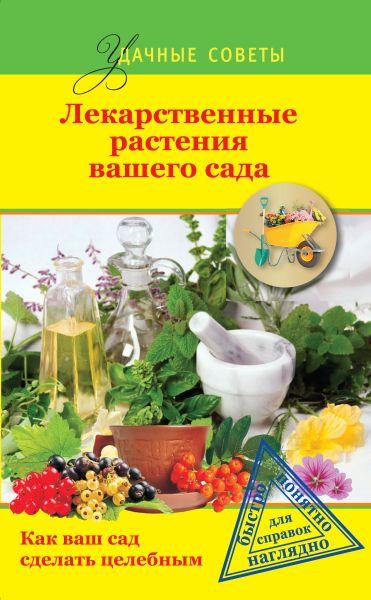 Лекарственные растения вашего сада