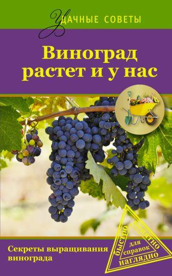 Виноград растет и у нас .