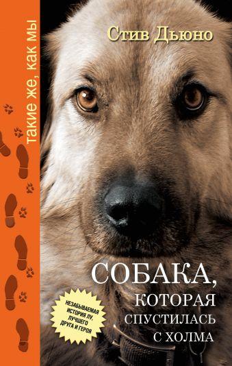 Собака, которая спустилась с холма. Незабываемая история Лу, лучшего друга и героя Дьюно Стив