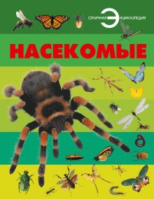 Спектор А.А. - Насекомые обложка книги