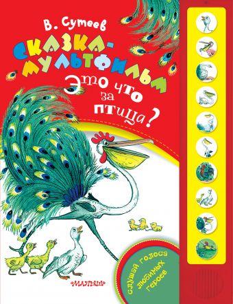 Сказка-мультфильм. Это что за птица? Сутеев В.Г.