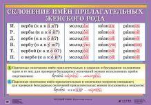 Шукейло В.А., Вохмянина Л.А. - Русский язык. Роль мягкого знака. Склонение имен прилагательных женского рода обложка книги