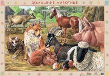 Оверчук Т.И., Сивоглазов В.И., Шляхтина Т.Ю. - Домаш.животные.Скотный двор/Чем питаются животные.(2) обложка книги