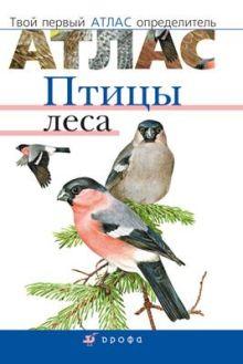 Бровкина Е.Т., Сонин Н.И - Птицы леса. Твой первый атлас-определитель. 5–9 классы. Атлас-определитель обложка книги