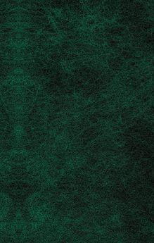 Обложка сзади Под деревом зеленым Томас Гарди