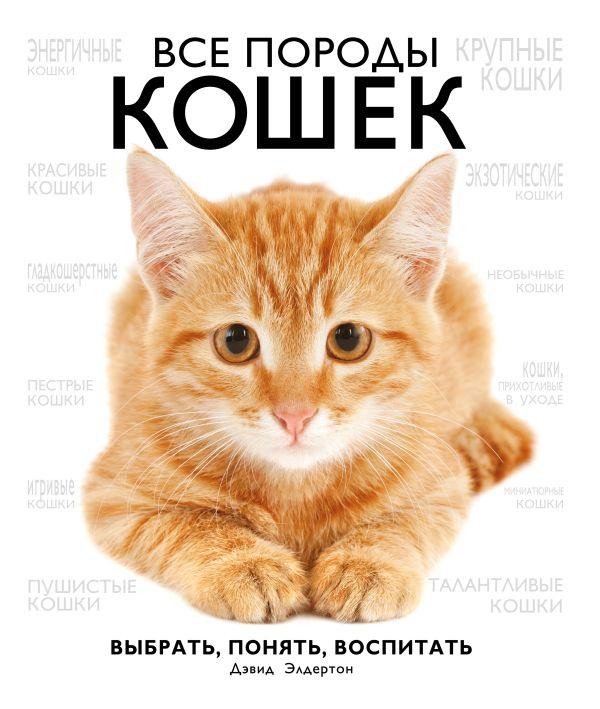 Кошки книга уход скачать