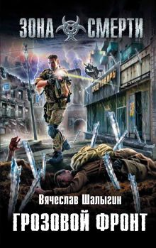 Шалыгин В.В. - Грозовой фронт обложка книги