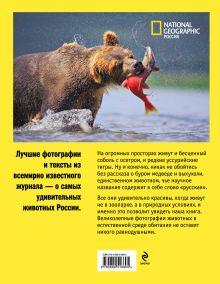Обложка сзади Дикие животные России
