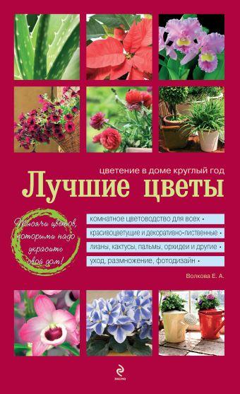 Лучшие цветы. Цветение в доме круглый год (красная обложка) Волкова Е.А.