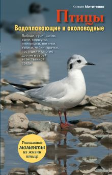 Митителло К.Б. - Птицы. Водоплавающие и околоводные обложка книги