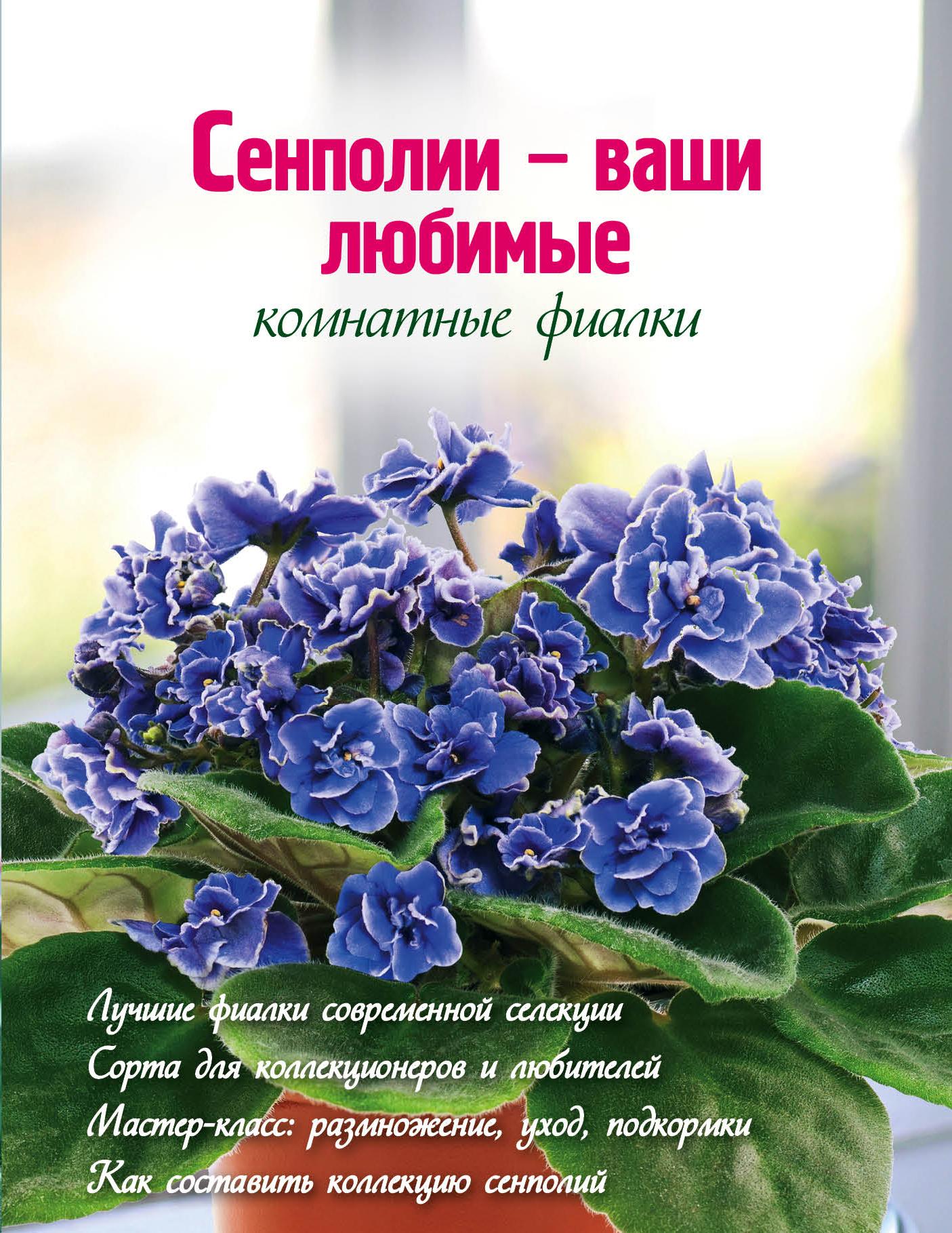 Сенполии - ваши любимые комнатные фиалки (Вырубка. Цветы в саду и на окне (обложка))