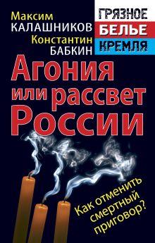 Калашников М., Бабкин К. - Агония или рассвет России. Как отменить смертный приговор? обложка книги