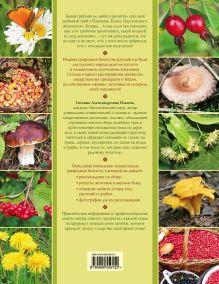 Обложка сзади Грибы, ягоды и полезные травы Ильина Т.А.