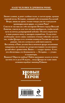 Обложка сзади Гладиатор. Книга 2. Железные легионы Андрей Посняков