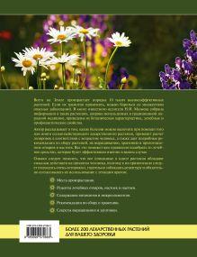 Обложка сзади Высокоэффективные лекарственные растения. Большая энциклопедия Мазнев Н.И.