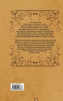 Обложка сзади Пушкин в изгнании Иван Новиков