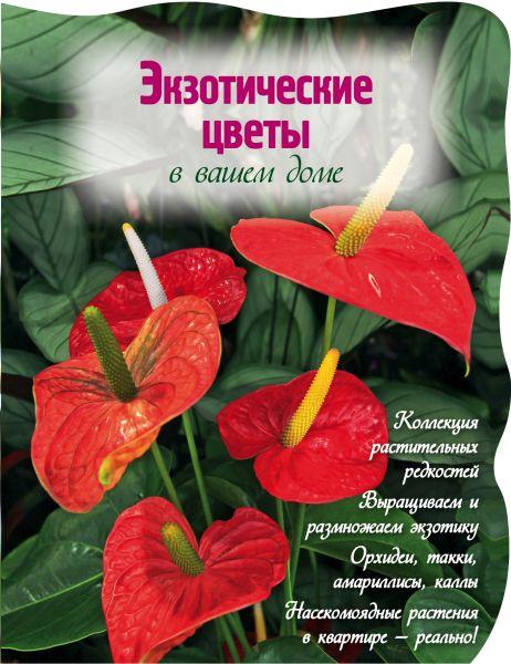 Экзотические цветы в вашем доме (Вырубка. Цветы в саду и на окне (обложка))