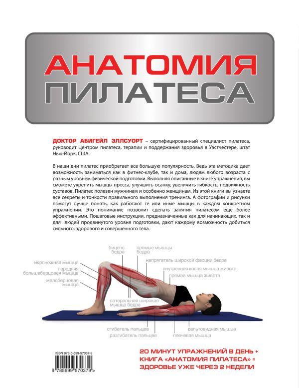 анатомия пилатеса скачать