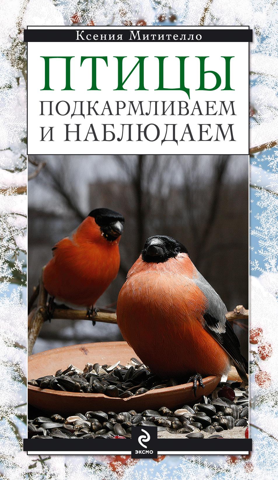 Птицы. Подкармливаем и наблюдаем