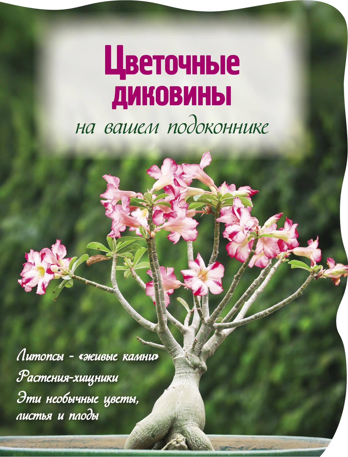 Цветочные диковины на вашем подоконнике (Вырубка. Цветы в саду и на окне (обложка))