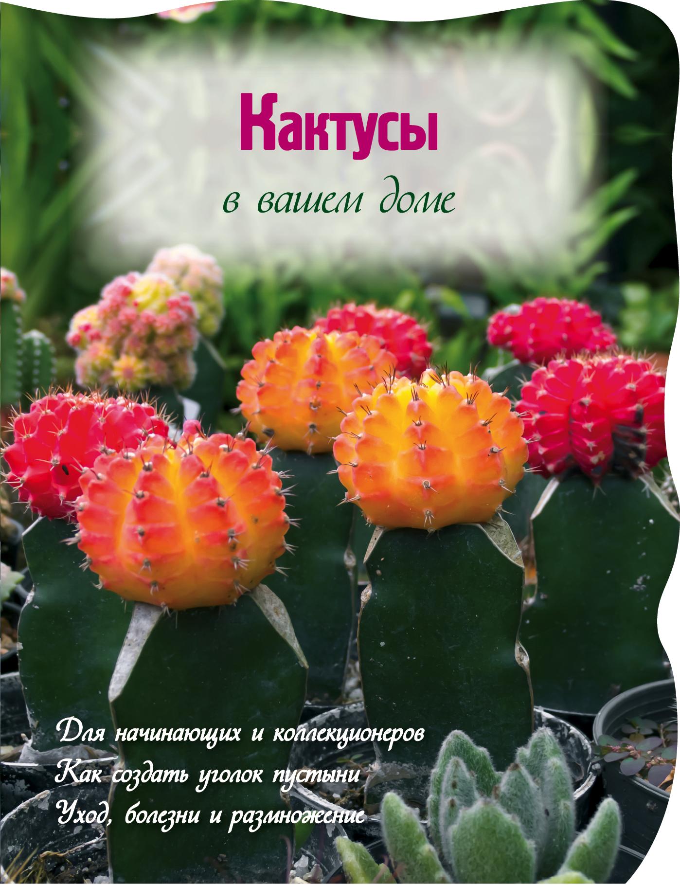 Кактусы в вашем доме (Вырубка. Цветы в саду и на окне (обложка))