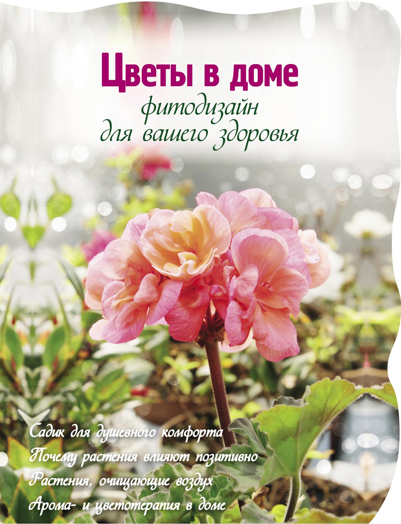 Цветы в доме. Фитодизайн для вашего здоровья