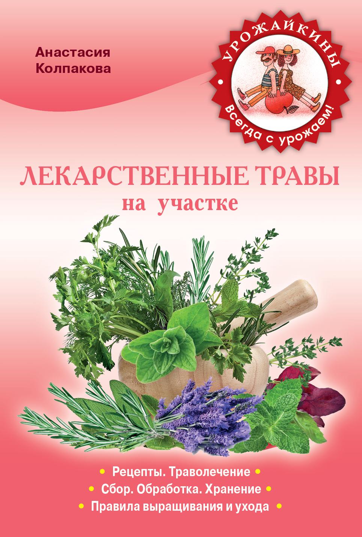 Лекарственные травы на вашем участке