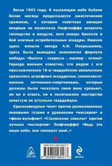 Обложка сзади Штрафники против асов Люфтваффе.