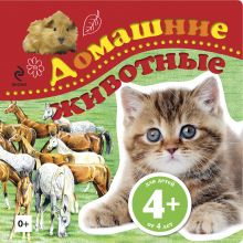 - 4+ Домашние животные обложка книги