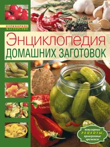 - Энциклопедия домашних заготовок (комплект книга с наклейками) обложка книги