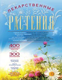 Заостровская Е.Ю. - Лекарственные растения (оформление 1) обложка книги
