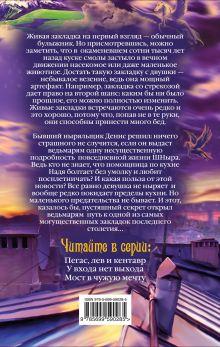 Обложка сзади Стрекоза второго шанса Дмитрий Емец