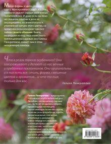 Обложка сзади Подарок для влюбленных в сад [комплект]