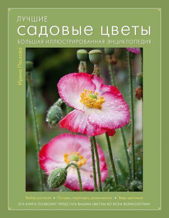 Лучшие садовые цветы. Большая иллюстрированная энциклопедия (Книга для цветовода) Пескова И.