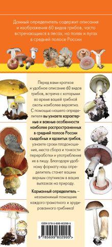 Обложка сзади Грибы. Определитель грибов русских лесов и полей Михаил Вишневский