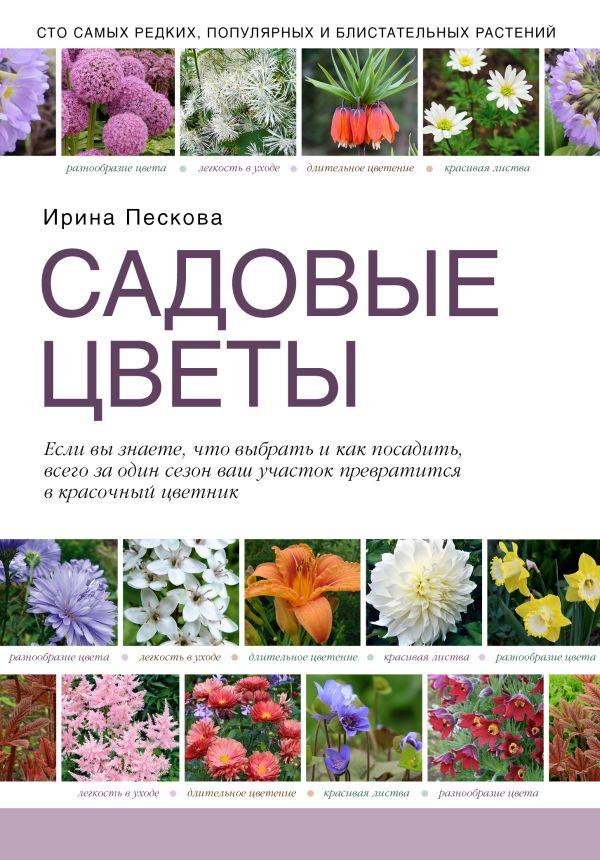 Садовые цветы Пескова И.
