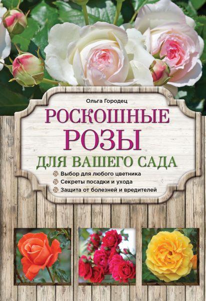 Роскошные розы для вашего сада