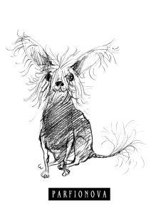 Обложка Блокнот для записей «Собачка Соля» Татьяна Парфенова