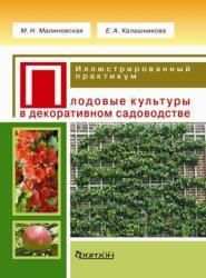 Малиновская; Калашникова - Плодовые культуры. Иллюстрированный практикум. обложка книги