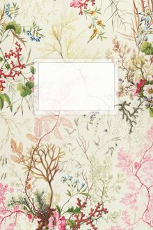 Блокнот А5. Цветущие розы