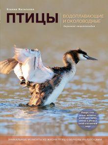 Птицы. Водоплавающие и околоводные (с музыкальным модулем) [поганка] (Подарочные издания. Энциклопедии животных)