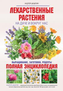 Лекарственные растения на даче и вокруг нас обложка книги