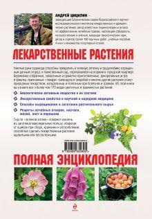 Обложка сзади Лекарственные растения на даче и вокруг нас Андрей Цицилин