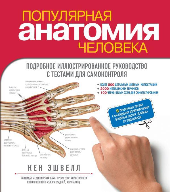 Популярная анатомия человека. Подробное иллюстрированное руководство с тестами для самоконтроля Эшвелл К.