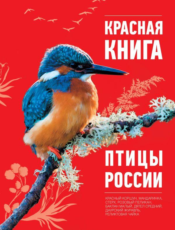 Красная книга. Птицы России Скалдина О.В.