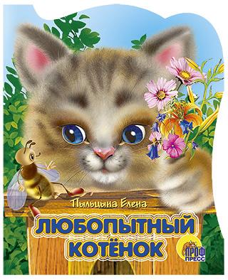 Любопытный котенок Пыльцина Е.